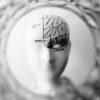 Ο κοινωνικός εγκέφαλος